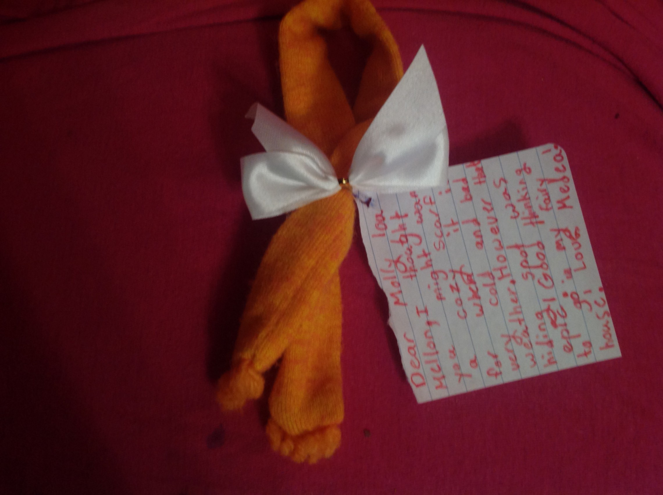 A Special Gift and Message for Molly Lou